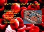 chemical transport to the cells