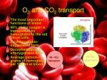 o 2 and co 2 transport