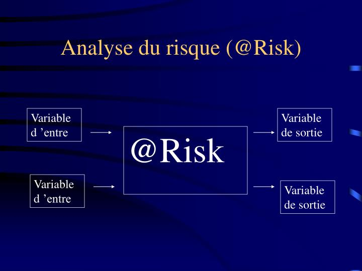 Analyse du risque (@Risk)