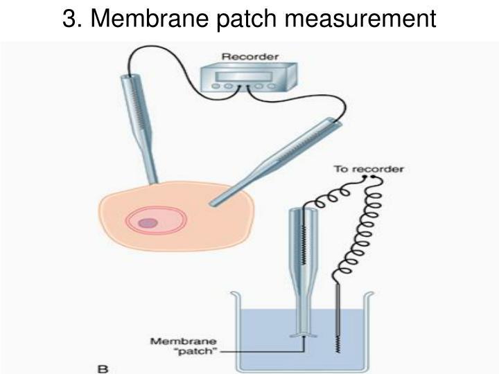 3. Membrane patch measurement