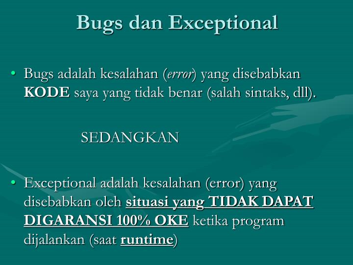 Bugs dan Exceptional