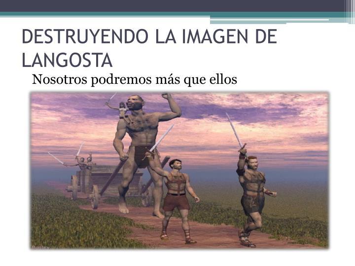 DESTRUYENDO LA IMAGEN DE LANGOSTA