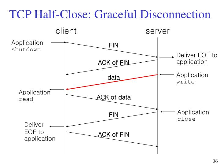 TCP Half-Close: Graceful Disconnection