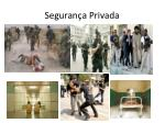 seguran a privada