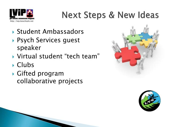Next Steps & New Ideas