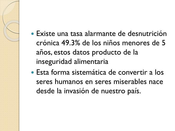 Existe una tasa alarmante de desnutrición crónica 49.3% de los niños menores de 5 años, estos datos producto de la inseguridad alimentaria