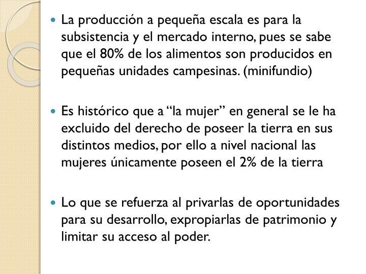 La producción a pequeña escala es para la subsistencia y el mercado interno, pues se sabe que el 80% de los alimentos son producidos en pequeñas unidades campesinas. (minifundio)