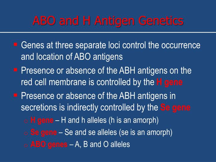 ABO and H Antigen Genetics