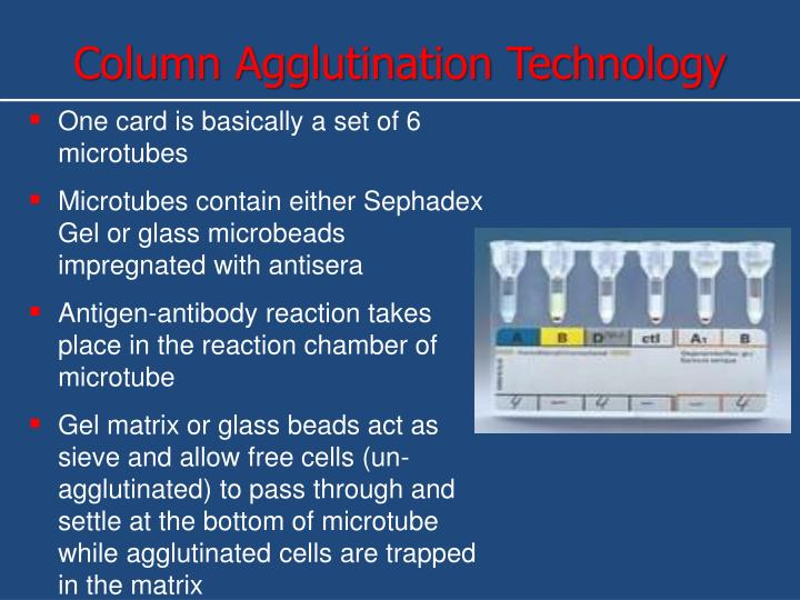Column Agglutination Technology