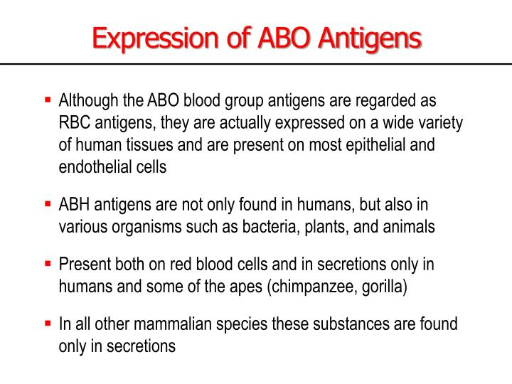 Expression of ABO Antigens