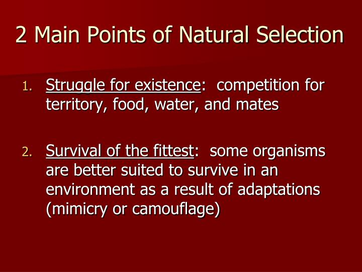 2 Main Points of Natural Selection