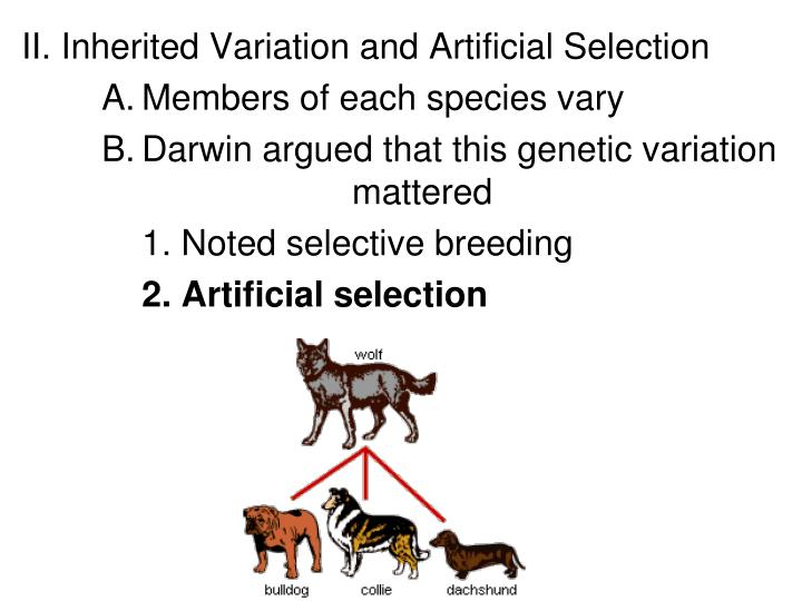 II. Inherited Variation and Artificial Selection