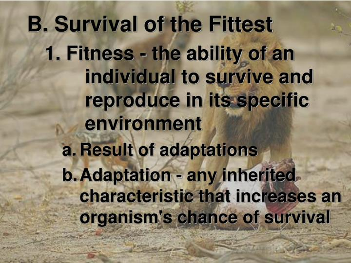 B. Survival of the Fittest