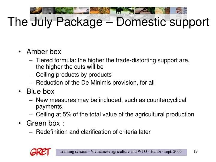 The July Package – Domestic support