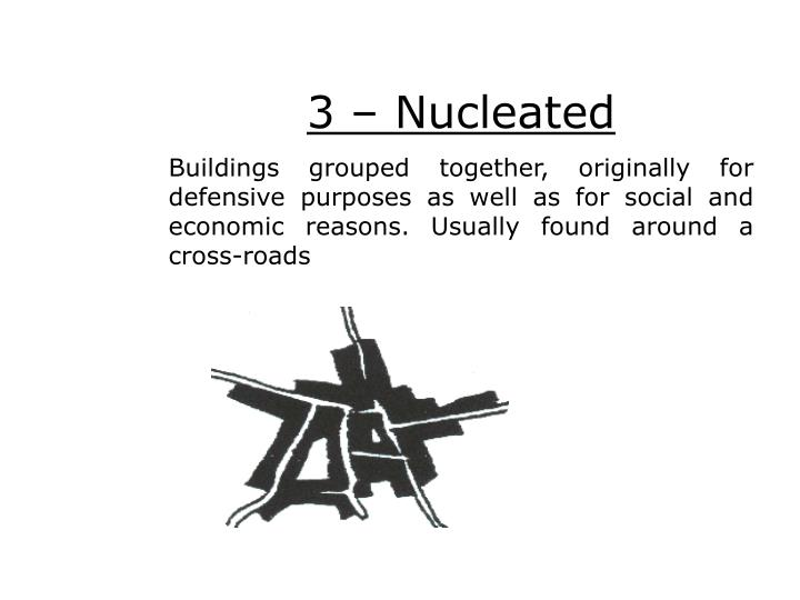 3 – Nucleated