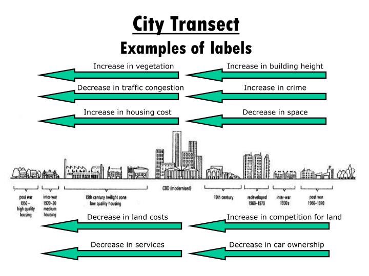 City Transect