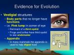 evidence for evolution3