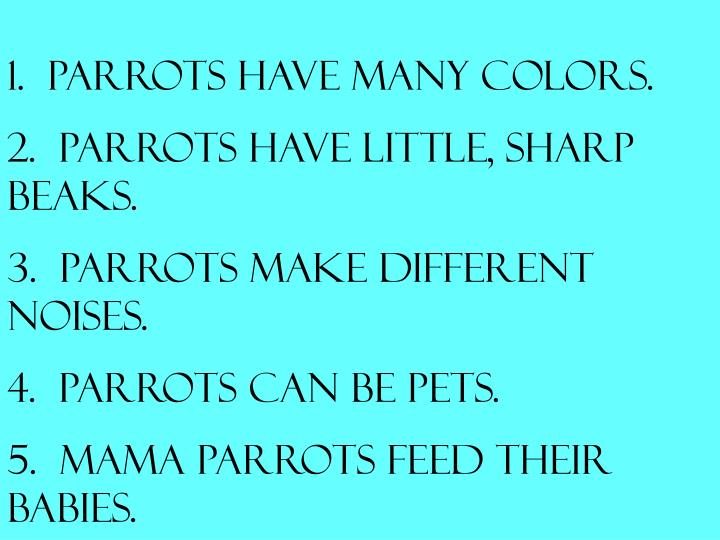 1.  Parrots have many colors.