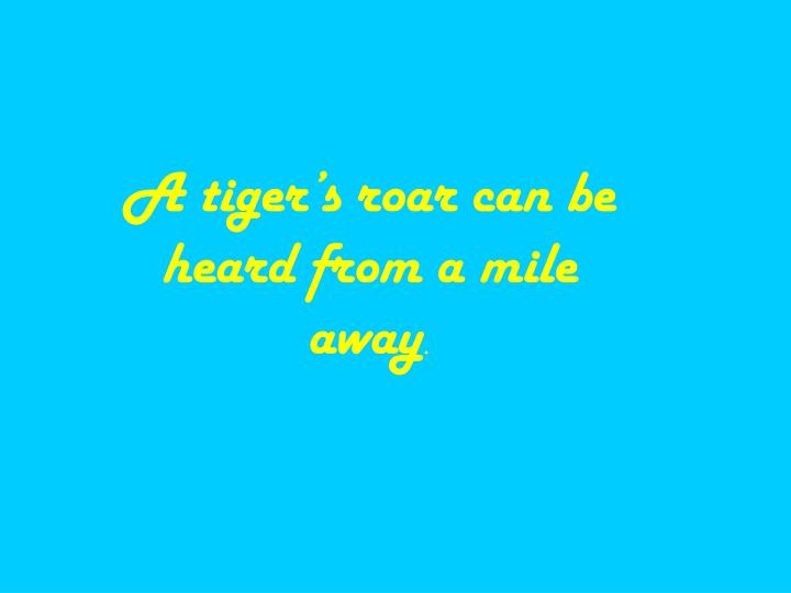 A tiger's roar can be heard from a mile away