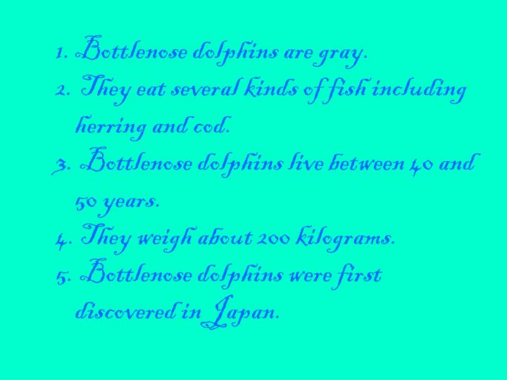 Bottlenose dolphins are gray.