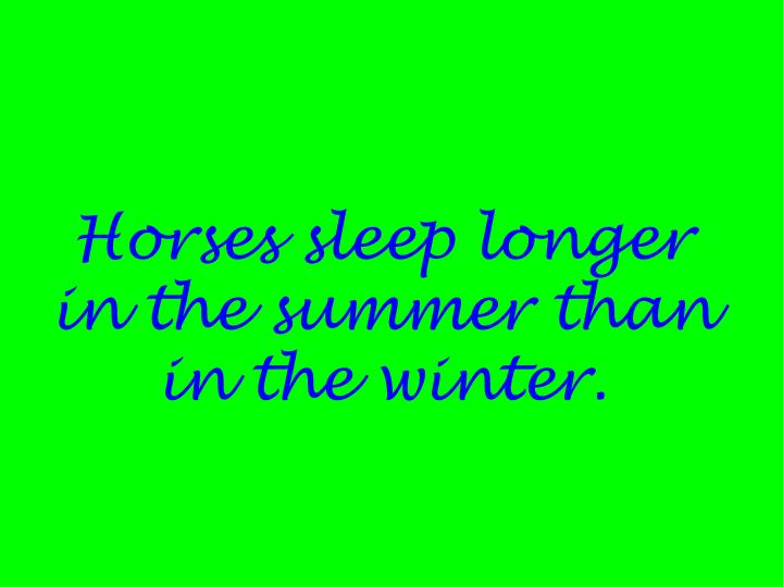 Horses sleep longer in the summer than in the winter.