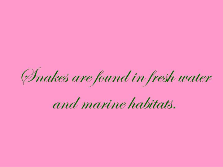 Snakes are found in fresh water and marine habitats.