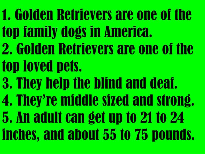 1. Golden Retrievers are one of the top family dogs in America.