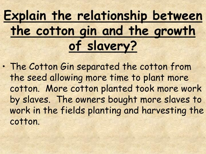Explain the relationship between the cotton gin and the growth of slavery?