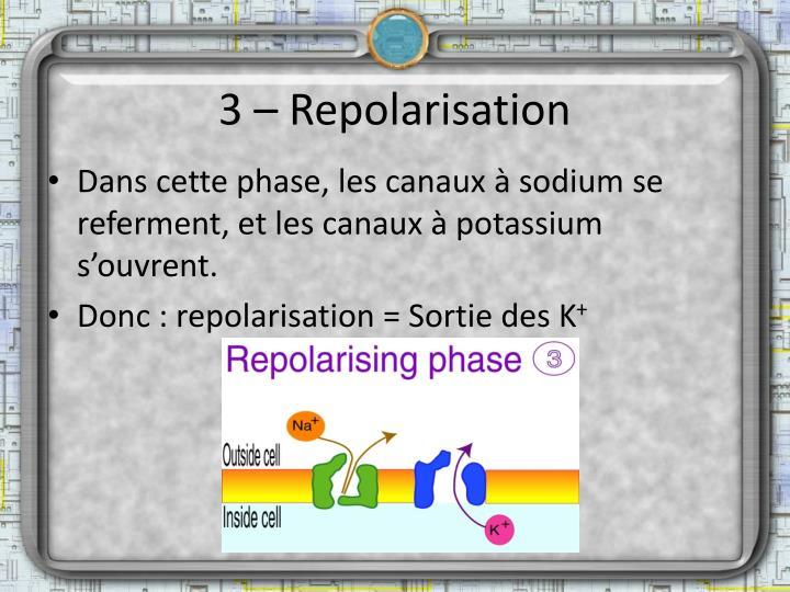 3 – Repolarisation