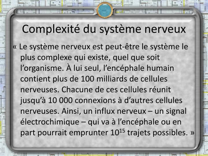 Complexité du système nerveux