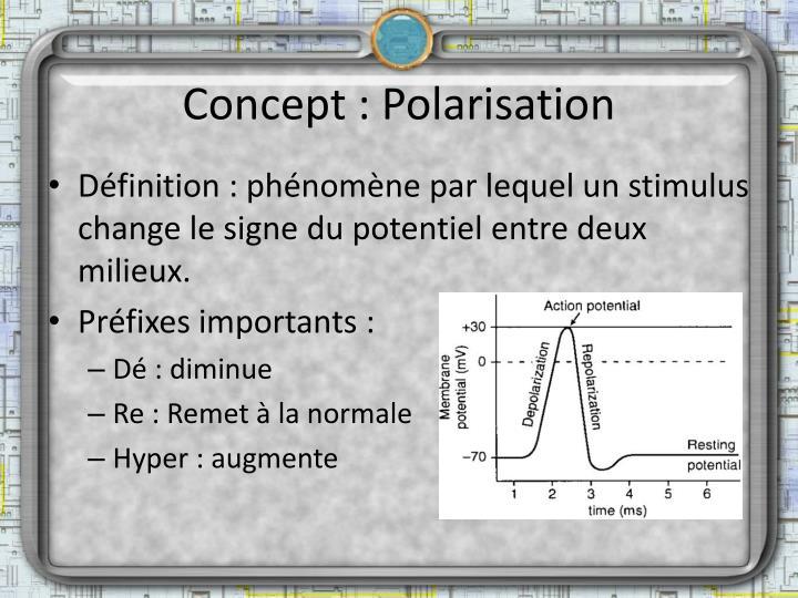 Concept : Polarisation