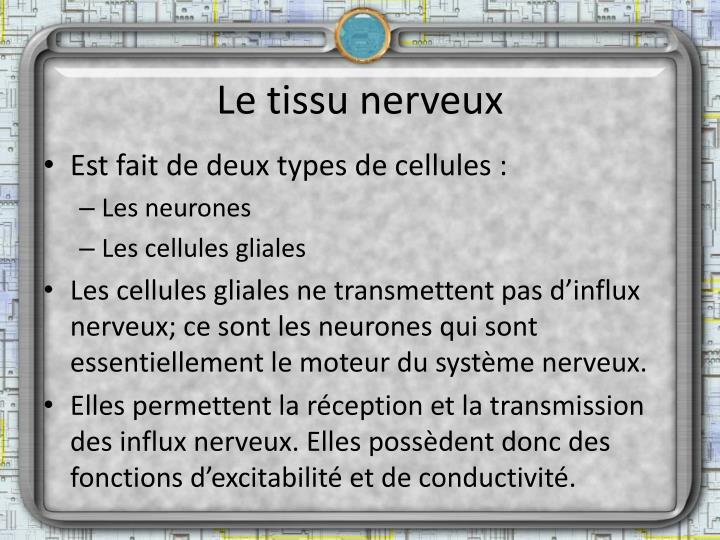 Le tissu nerveux