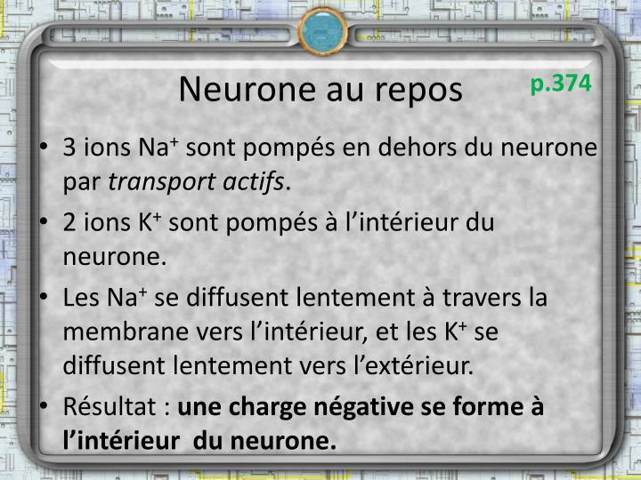 Neurone au repos