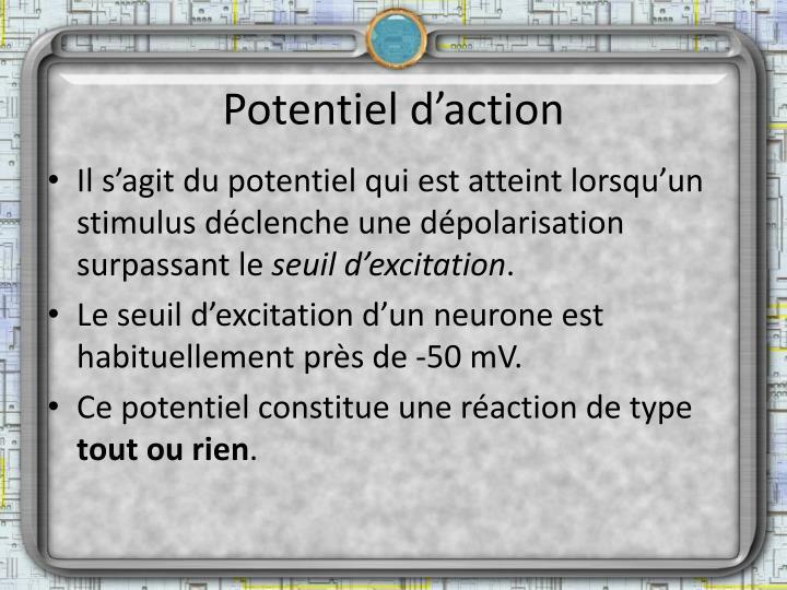Potentiel d'action