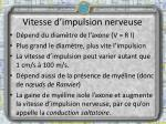 vitesse d impulsion nerveuse