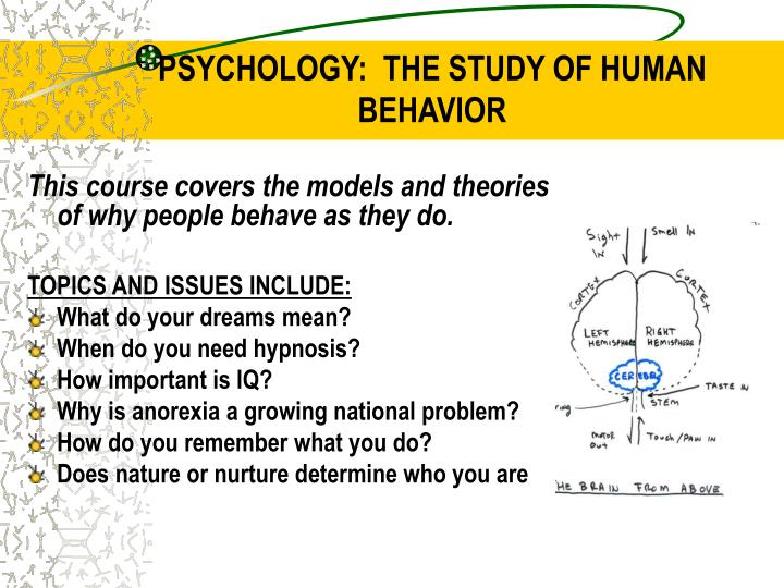 an analysis of the study of society and human behavior Chapter one understanding organizational behaviour behavior is the systematic study of human behavior extend beyond the firm into the larger society in.