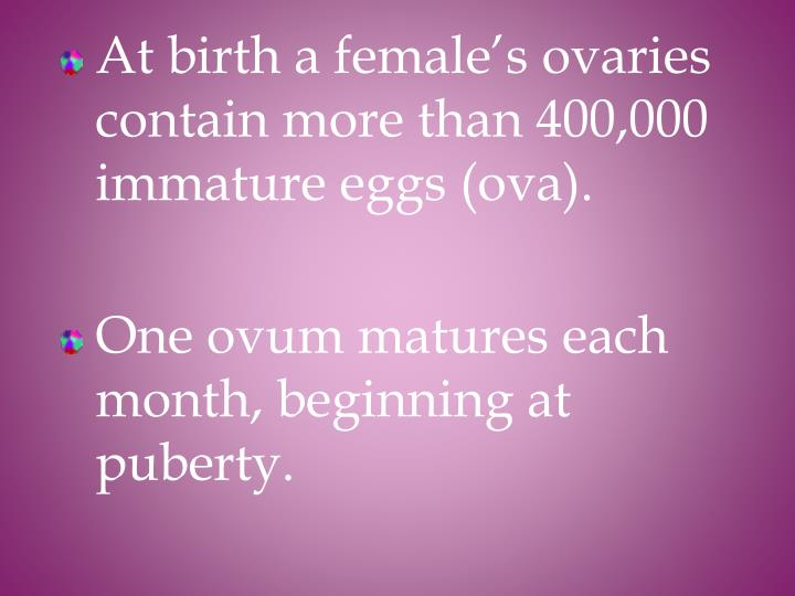 At birth a female's ovaries contain more than 400,000 immature eggs (ova).