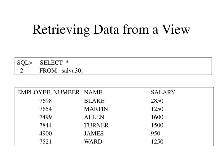 Retrieving Data from a View