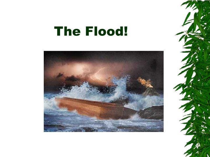 The Flood!