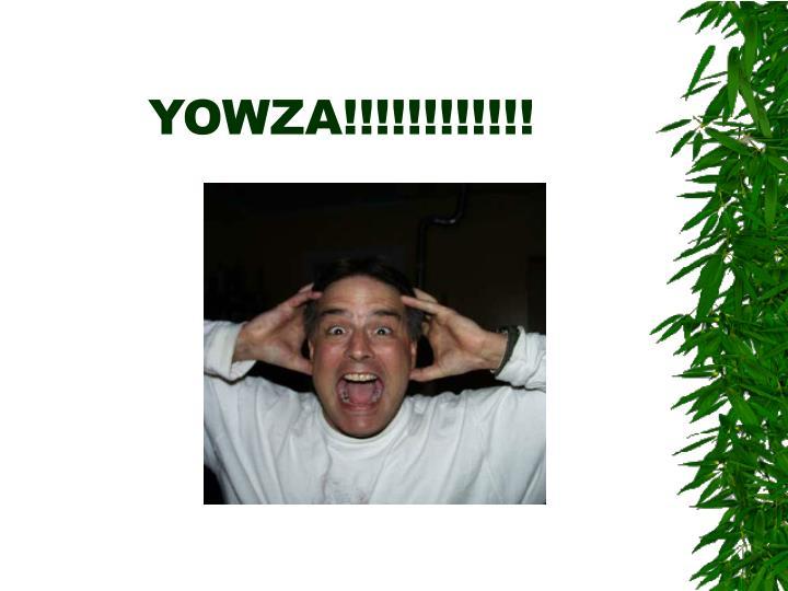 YOWZA!!!!!!!!!!!!