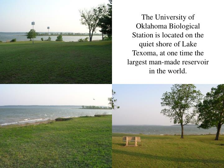 The University of Oklahoma Biological Station is located on the quiet shore of Lake Texoma, at one time the largest man-made reservoir in the world.