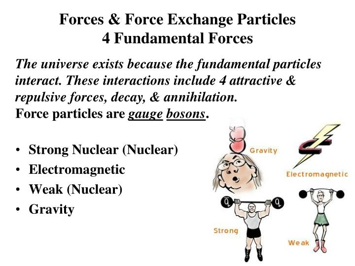 Forces & Force Exchange Particles