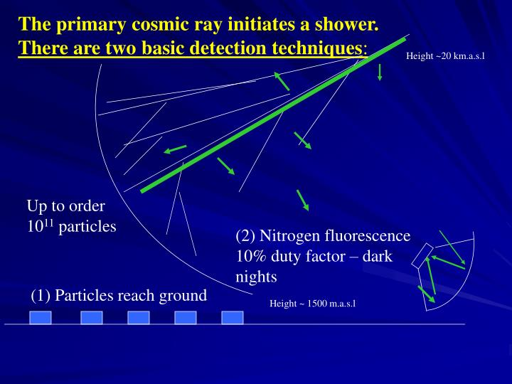 The primary cosmic ray initiates a shower.