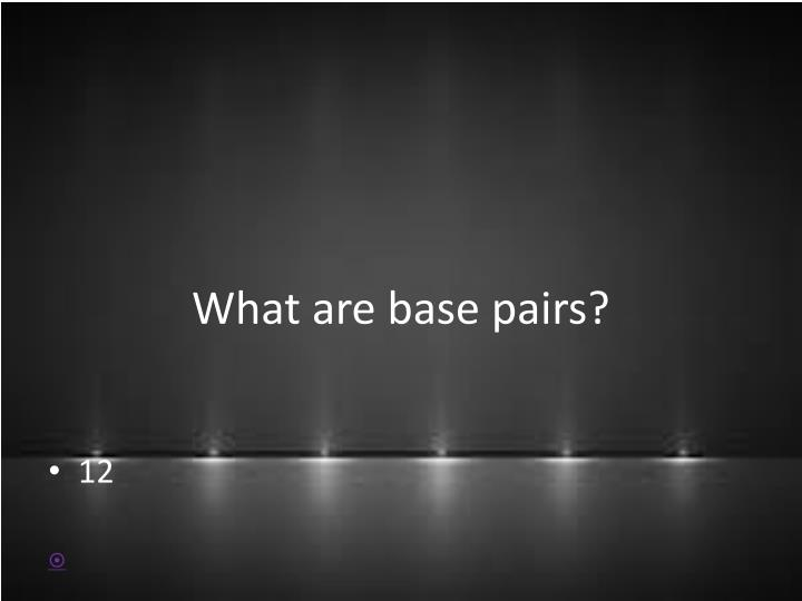 What are base pairs?