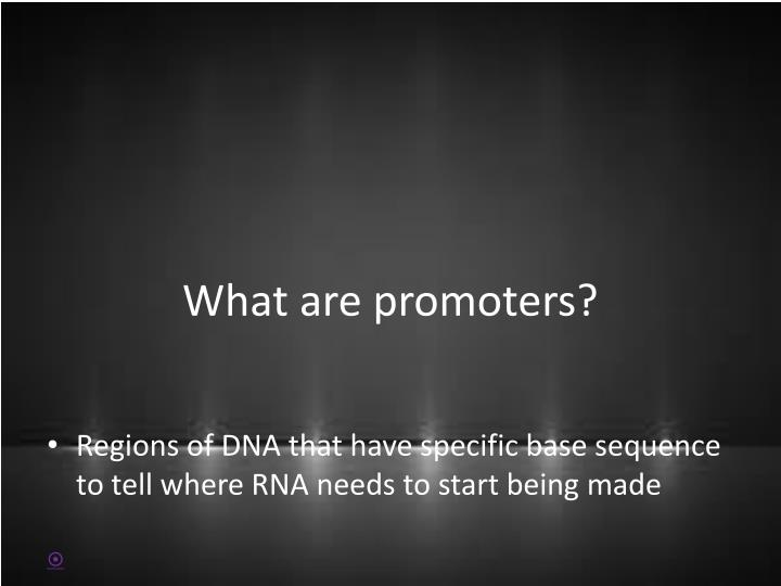 What are promoters?