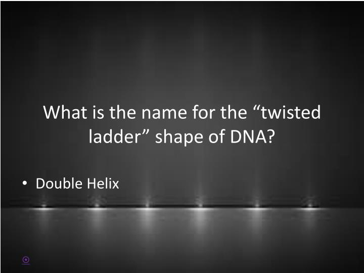 What is the name for the twisted ladder shape of dna