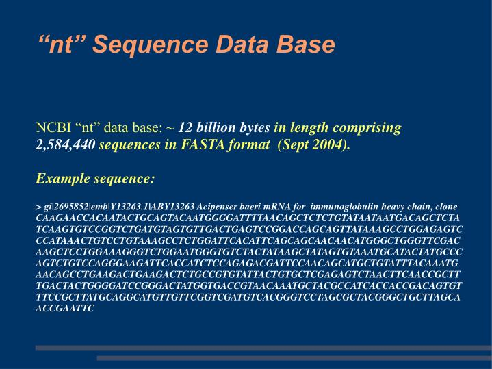 "NCBI ""nt"" data base: ~"