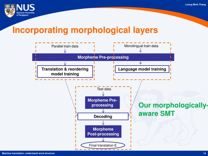 Incorporating morphological layers