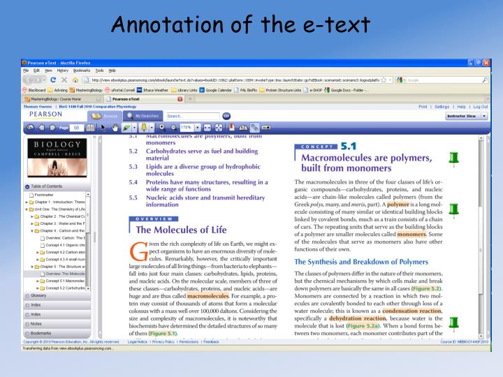 Annotation of the e-text