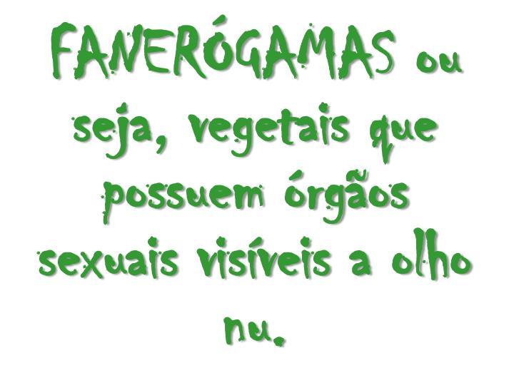 FANERGAMAS ou seja, vegetais que possuem rgos sexuais visveis a olho nu.